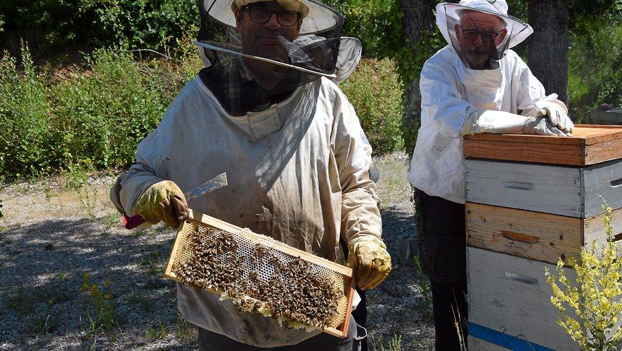 Jérôme de Lescure et Alain Teissier, les présidents du syndicat apicole l'Abeille de l'Aveyron.