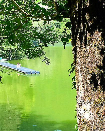 L'arrivée : les eaux vertes du pont de Lous