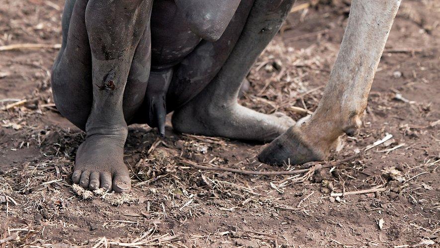 Vingt clichés exposent le lien charnel tissé entre les animaux et ces enfants, gardiens de troupeau.