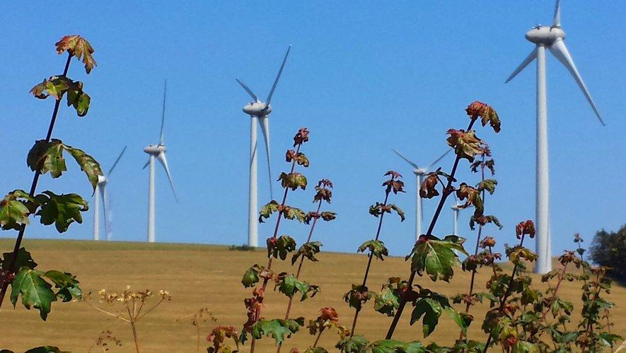 Slalom entre les éoliennes.