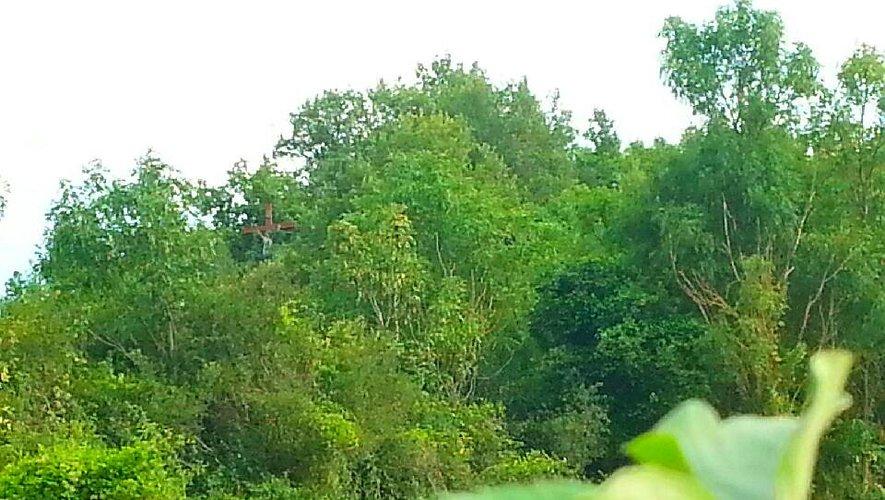 Le calvaire avalé par la forêt.