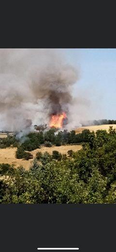 Les flammes menaçaient des habitations.