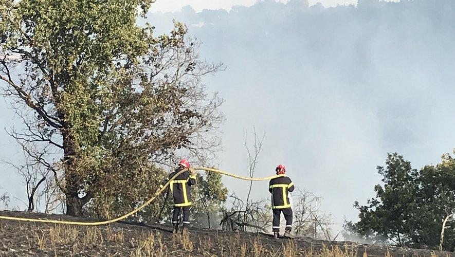 D'importantes forces mobilisées contre l'incendie.