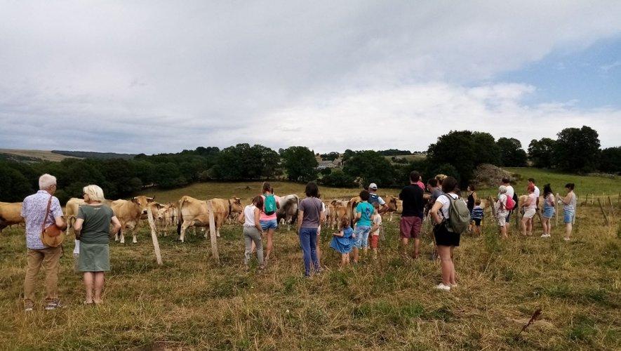Visite d'une ferme d'élevage