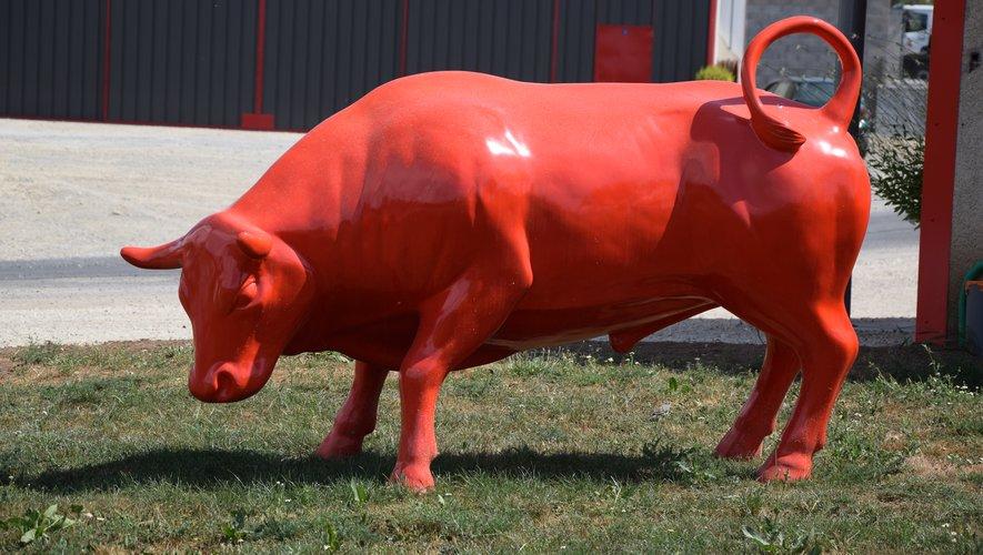 Voilà un taureau qui ne manque pas de piment !
