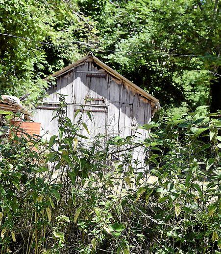 La cabane au fond du jardin.