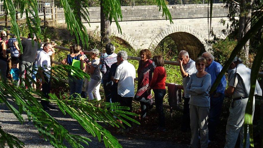 Rallye Touristique autour du Viaduc