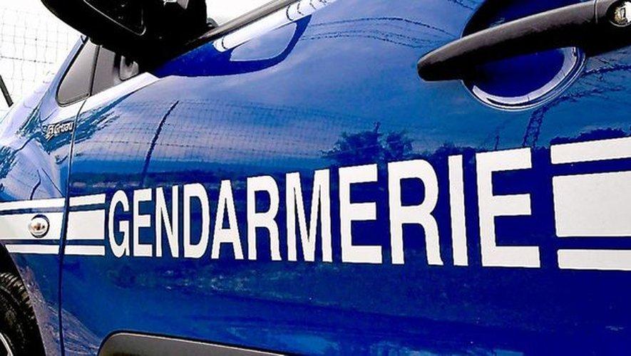 Les gendarmes ont rapidement interpellé l'individu.