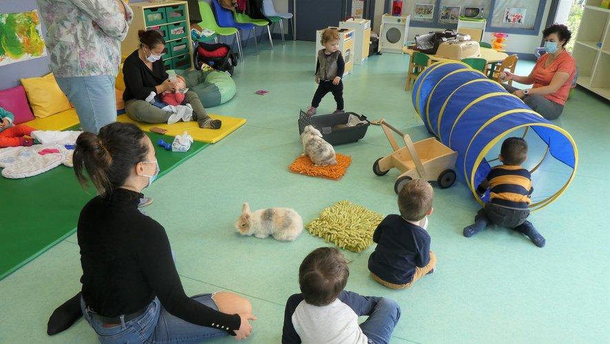 Belle osmose entre les enfants et les animaux.