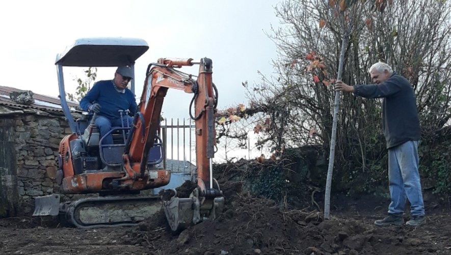 Un cerisier du Japon a été planté afin d'embellir l'entrée sud du village.