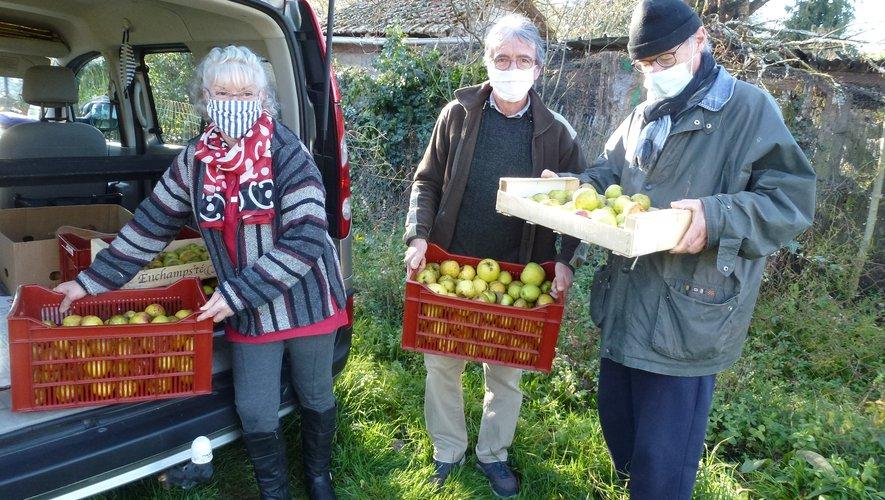 Les pommes en route pour le pressoir.