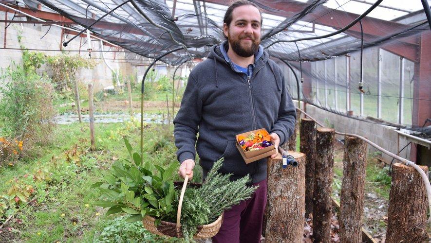 Michaël Fayret innove avec cette culture sur chêne pour obtenir, d'ici un peu plus de deux ans,des pleurotes.