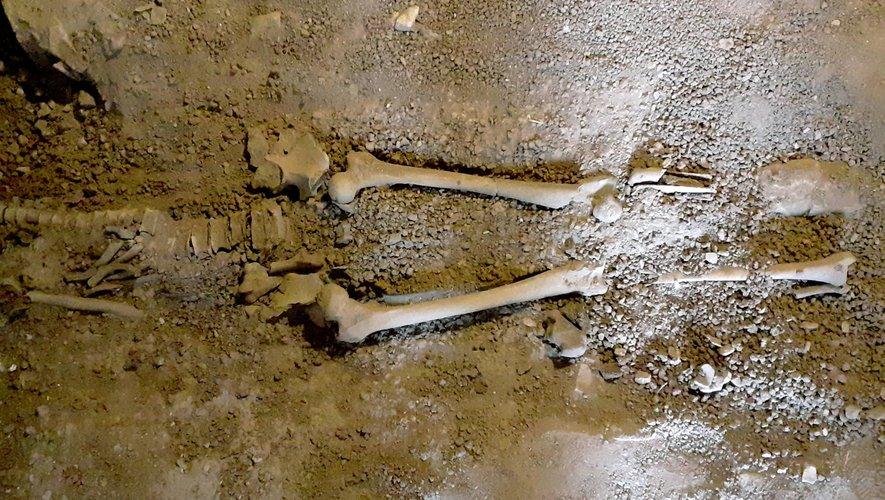 Mystère autour de ce squelette, découvert dans la cave du presbytère, construit avant la révolution française.