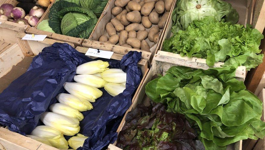 Maraîchage et consommation de produits bio en circuit court : deux projets aveyronnais à soutenir.