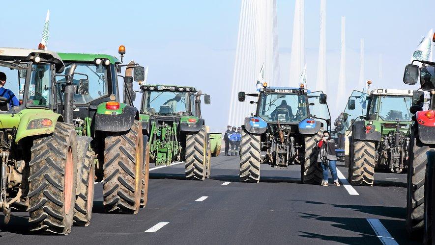 Une trentaine de tracteurs a emprunté le viaduc de Millau, hier sur les coups de midi.