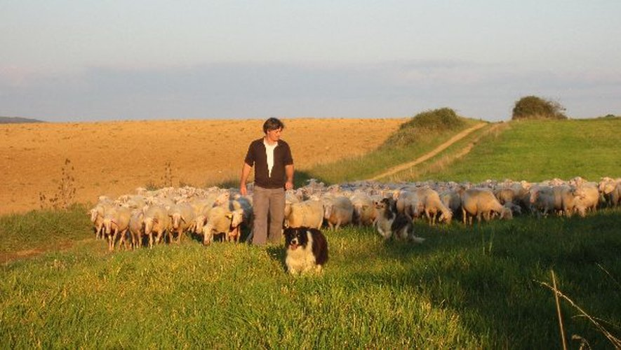 Cultures et élevages divers seront accessibles à la visite aux quatre coins du département.