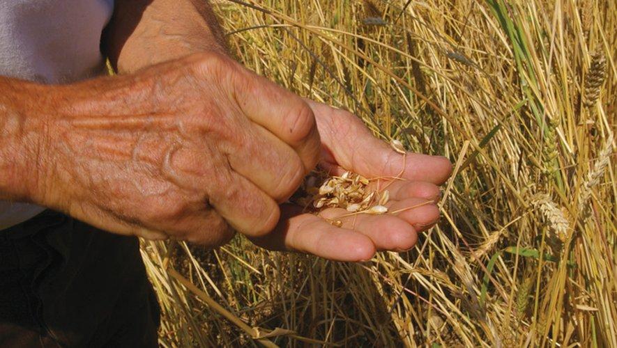 Pour une agriculture plus saine et plus durable.