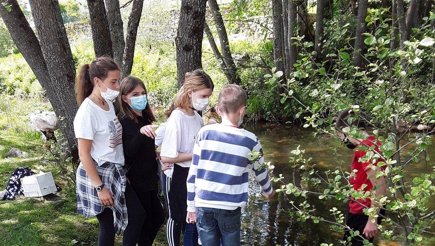 Les élèves ont appris à repérer les indices et les traces de présence de la faune aquatique.