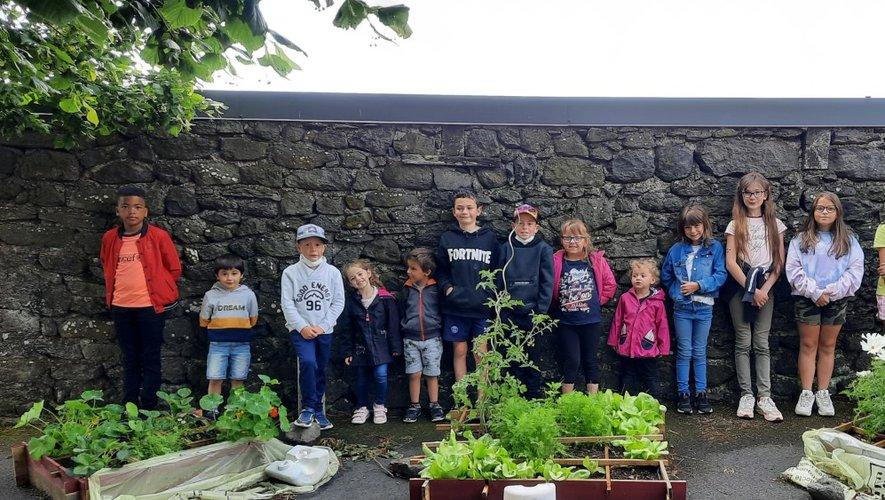 Un joli potager a pris place dans la cour de l'école, grâce aux soins attentionnés des élèves.