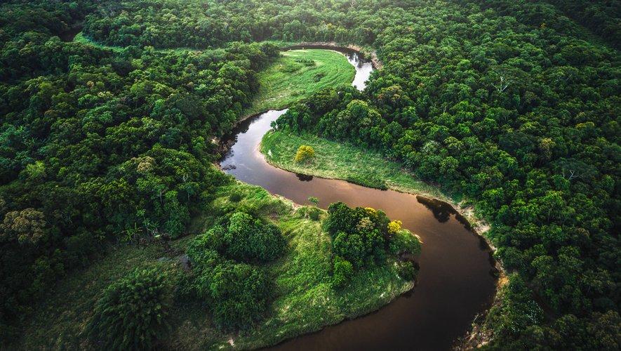 L'étude montre qu'en particulier la partie sud-est de l'Amazonie est passée d'un puits de carbone à une source de CO2, gaz responsable du réchauffement de la planète.