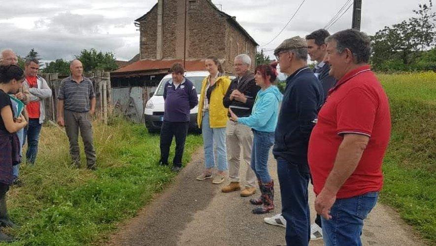 Les élus en visite sur l'exploitation de Jacques Rey à Lescure-Jaoul.