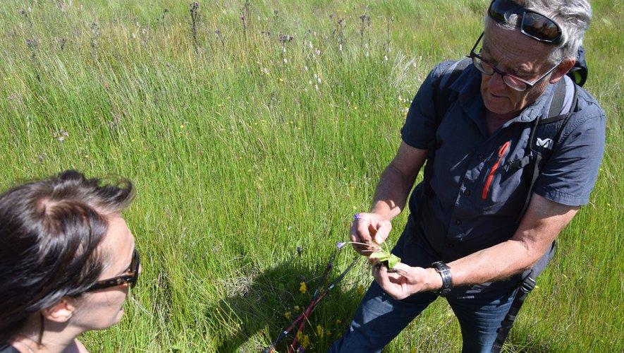 Avant le réconfort du marché de producteurs de Pays, Gonzalo proposera une rando sur le plateau.