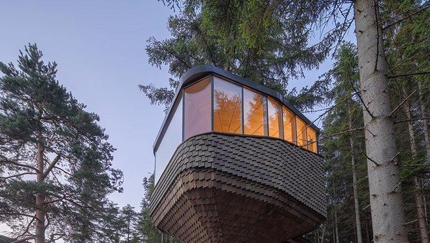 La cabane dans les bois, une tendance loin d'être anodine.