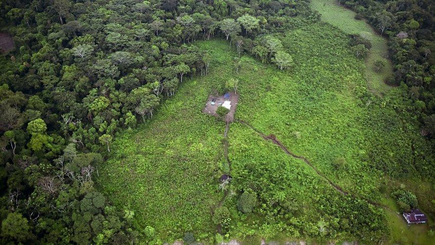 """Sur les 31 """"signes vitaux"""" de la planète, qui incluent les émissions de gaz à effet de serre, l'épaisseur des glaciers ou la déforestation, 18 atteignent des records, selon ce texte publié dans la revue BioScience."""