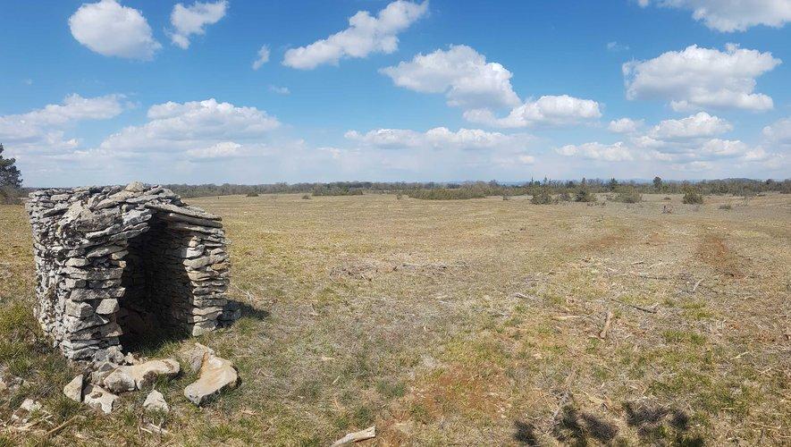 Un projet de restauration du paysage caussenard est en cours.