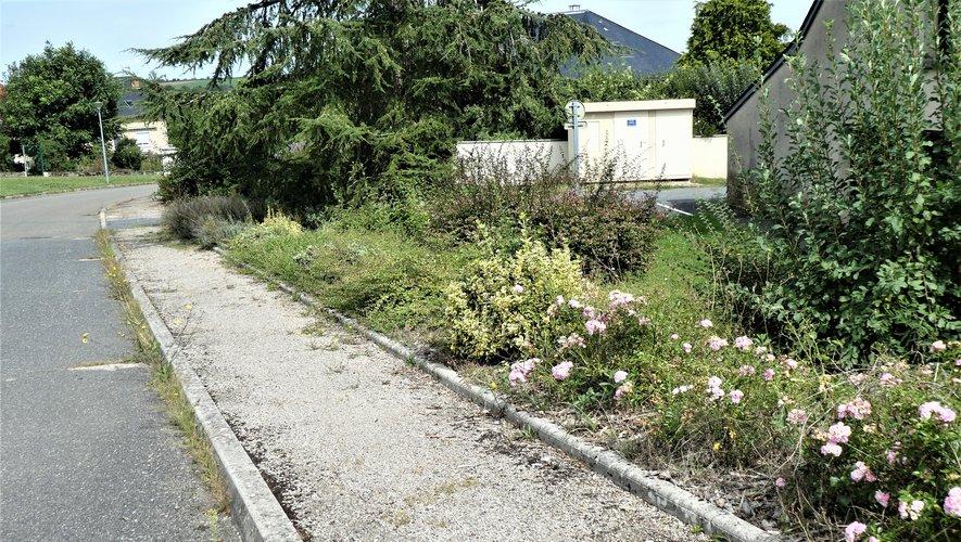 Les volontaires invités à nettoyer espaces verts, rues, abords des lieux publics.