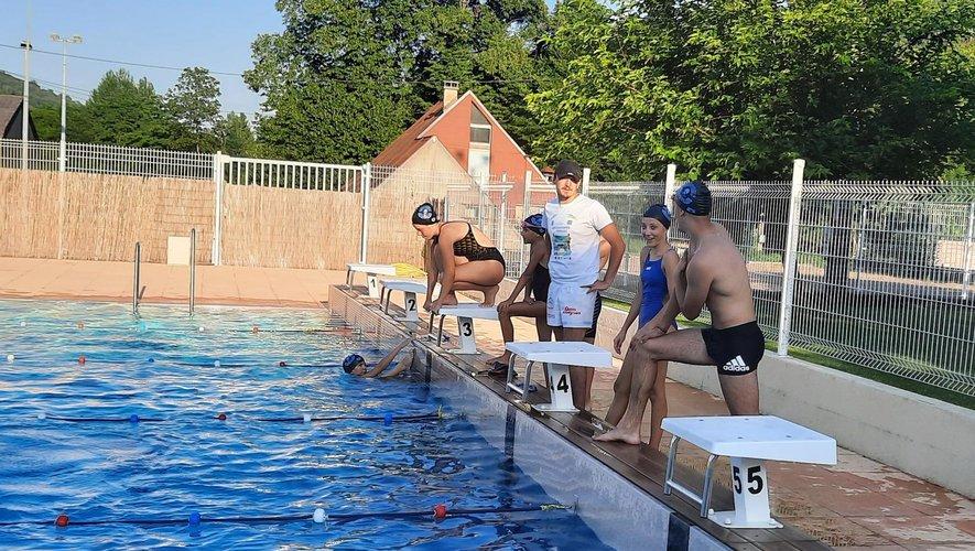 Les Dauphins qui sont licenciés ne payent pas l'entrée à la piscine.