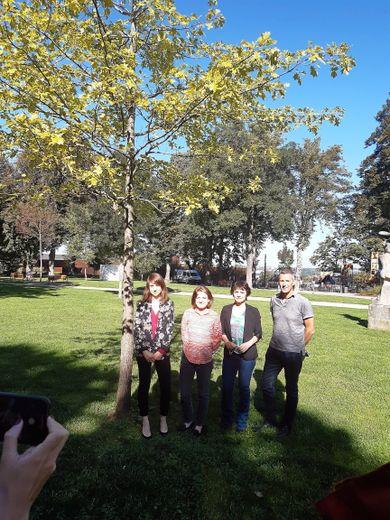 Une manifestation symbolique aura lieu le 10 novembre dans le jardin public.
