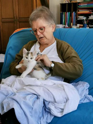 Bernadette est famille d'accueil pour les chats à Villefranche-de-Rouergue. DR
